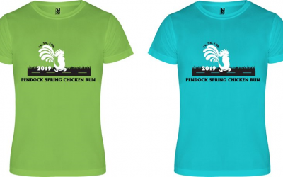 Pendock Spring Chicken Run